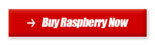 Buy Raspberry L-arginine Plus