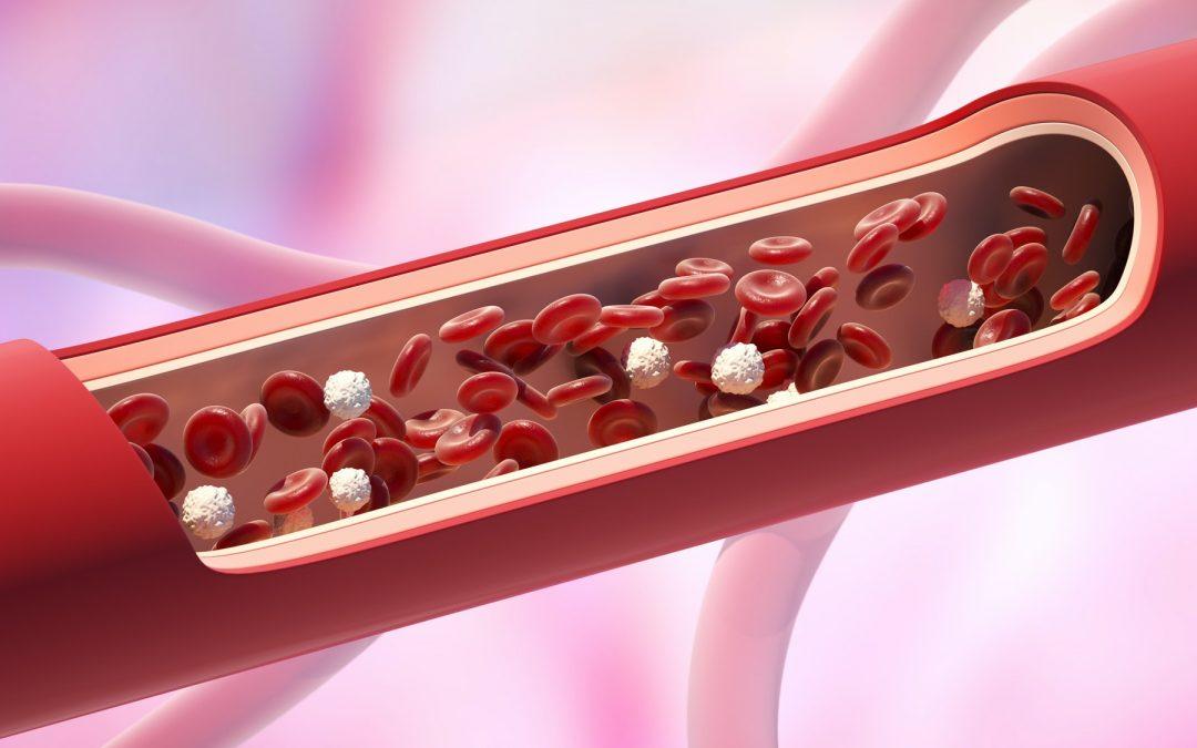 vasodilation and blood pressure